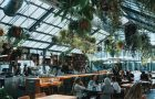 What You Need to Know to Start A New Restaurant